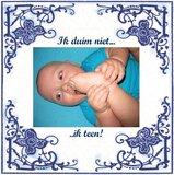 Delfts Blauw tegeltje (nr. 23) _