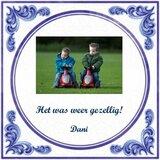 Delfts Blauw (nr.62 met foto)_